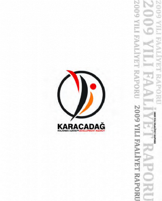 2009 Yılı Faaliyet Raporu