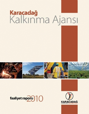 2010 Yılı Faaliyet Raporu
