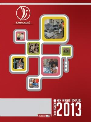 2013 Yılı Ara Faaliyet Raporu