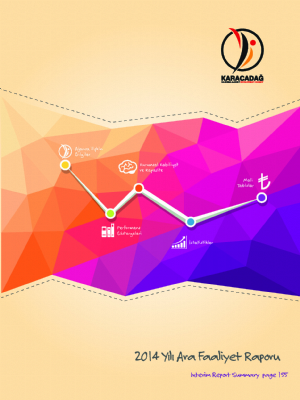 2014 Yılı Ara Faaliyet Raporu