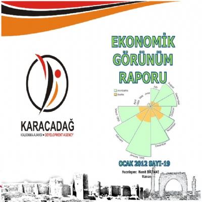 (Sayı 19) 2012 Ocak Ayı Aylık Ekonomik Görünüm Raporu