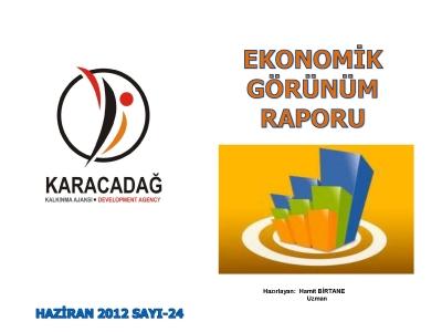 (Sayı 24) 2012 Haziran Ayı Aylık Ekonomik Görünüm Raporu
